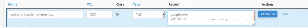 Vista con los datos rellenos en el GSC para añadir un nuevo campo en el registro TXT de las DNS